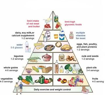 High Fiber and the New Food Pyramid